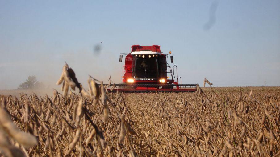 Las pérdidas de cosecha de soja fueron de US$ 1.300 millones por problemas de eficiencia en la trilla