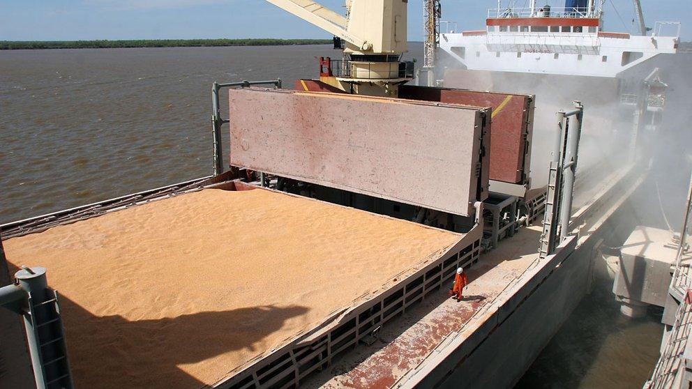 Aseguran que los ingresos de las exportaciones agroindustriales cayeron más de 1.600 millones de dólares en un mes