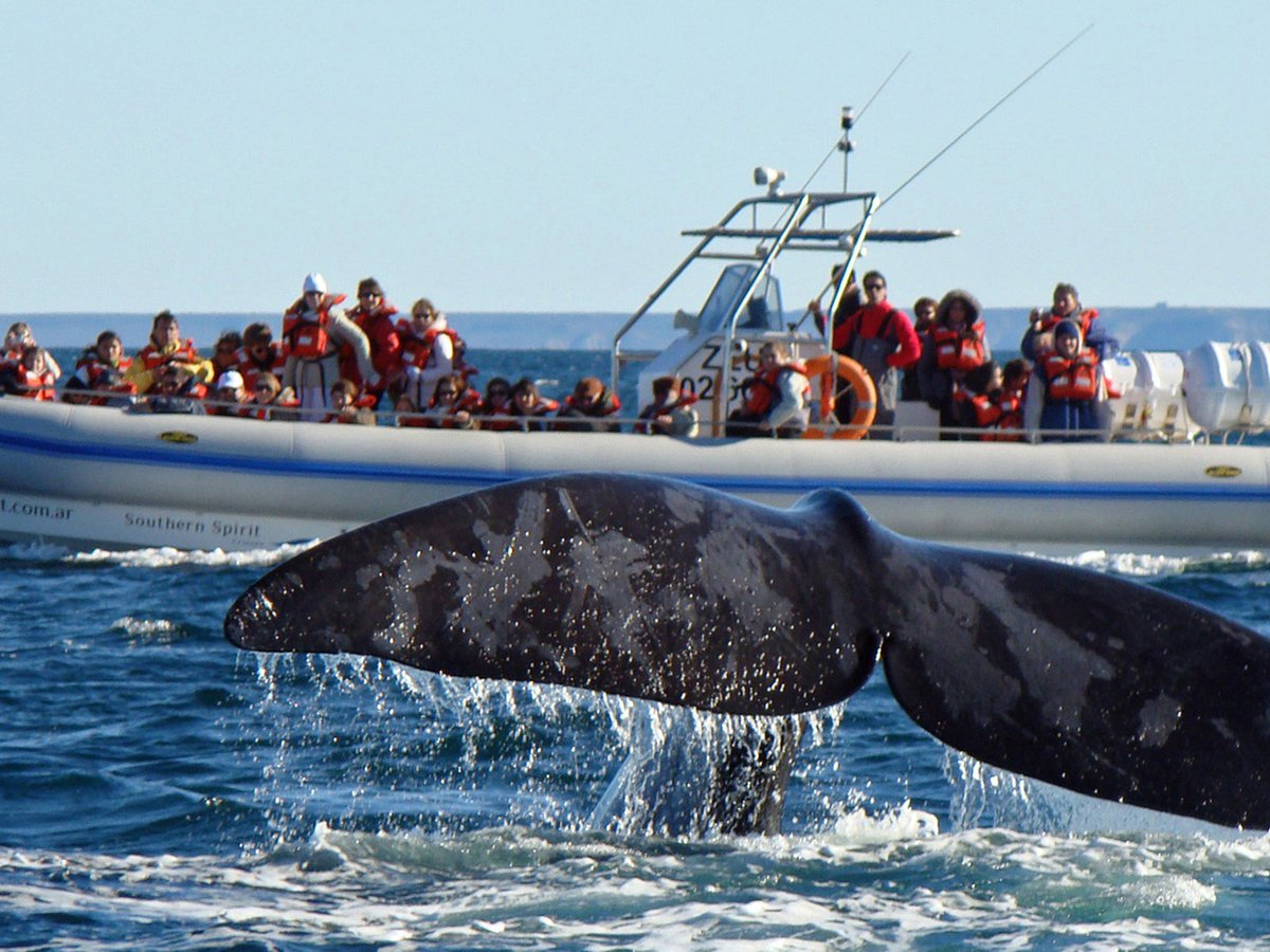 Prestadores turísticos de Chubut y de todo el país recibirán un aporte de $ 22.000 no reembolsables desde agosto a diciembre