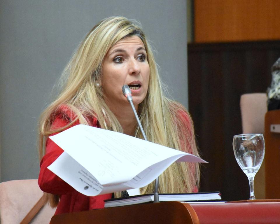 Caminoa afirma que no se respetaron los alcances del acuerdo del Juntos por el Cambio y planteó a la Junta Electoral que defina si tiene que ir ella o Terenzi