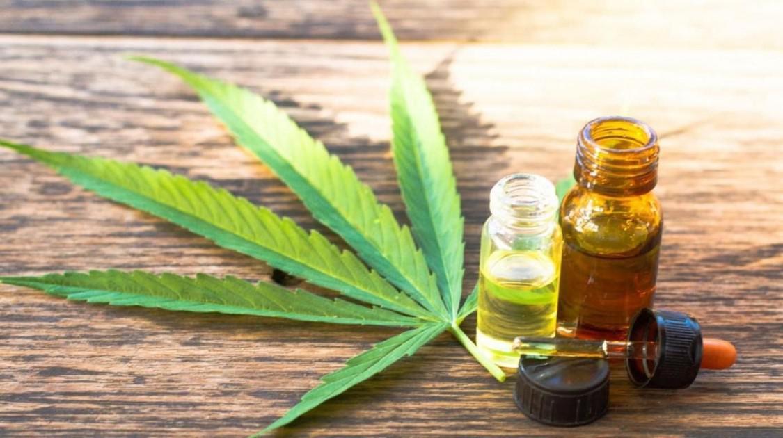 Arcioni creará una Sociedad del Estado que producirá cannabis en Chubut para uso medicinal y terapéutico